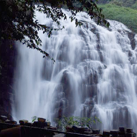 coorg-packages-from-mysore-for-2-days